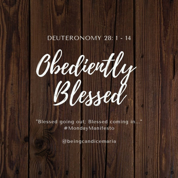Obediently Blessed.jpg